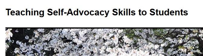 selfadvocacy